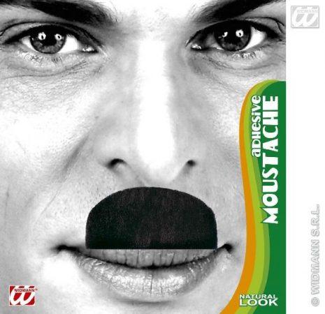 bajusz (Chaplin)
