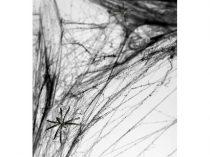 pókháló fekete 2 pókkal (25 gr)