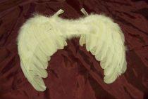 fehér, toll angyalszárny (gyerek méret)-601909
